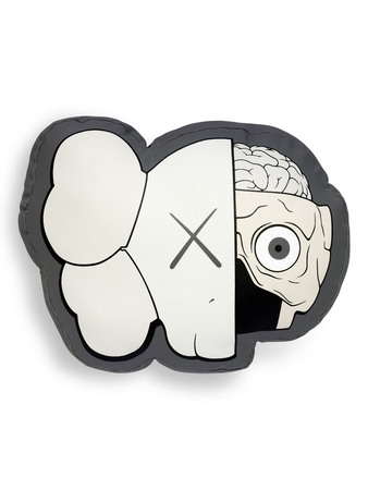 coussin-kaws-dissected