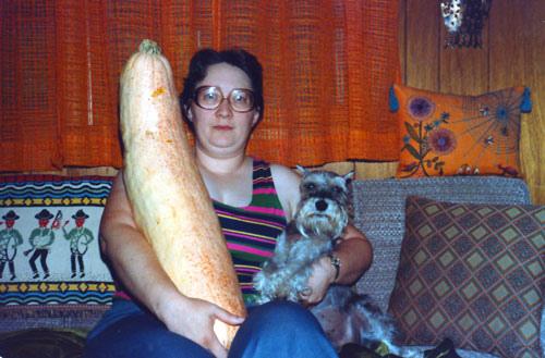 famille legume