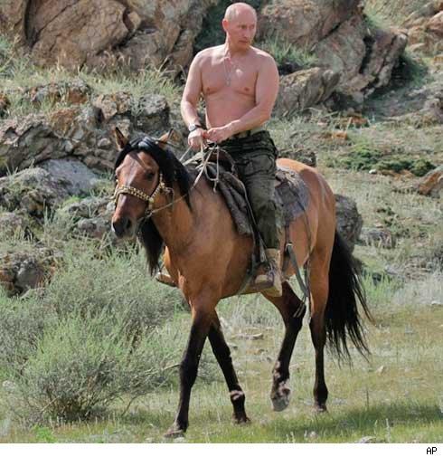 vladimir_putin cheval