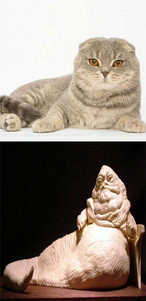 chat-jabba-le-hut-cosplay